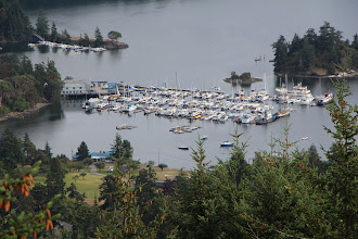Photo: Our boat is, in fact, impossible to see in this picture. It is exactly behind the large boat with the blue top canvas, 4 slips from the boathouse. Doesn't it look like it's happy here?