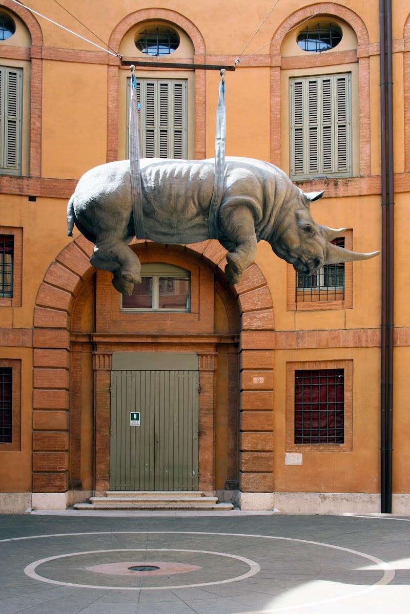 Un rinoceronte ?? di Fotodiale