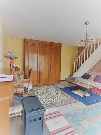 maison à Lignieres (18)