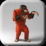 Cool Monkey Live Wallpaper
