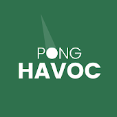 Pong Havoc : Block vs Ball Arkanoid Puzzle Game