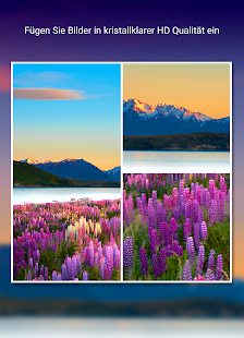 PictureJam Collage Maker Plus Screenshot