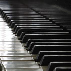 piano keys by Lina Turoci - Artistic Objects Musical Instruments ( keyboard, piano, keys, ivory, steinway )