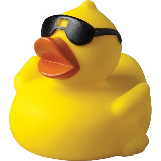 Mrs. Mop Duck