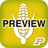 Corn Field Scout Preview