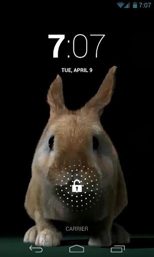 Cute Rabbit Jump Live Wallpape