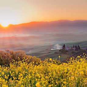 Alba in Val d'Orcia. by Pasquale Bimonte - Landscapes Sunsets & Sunrises