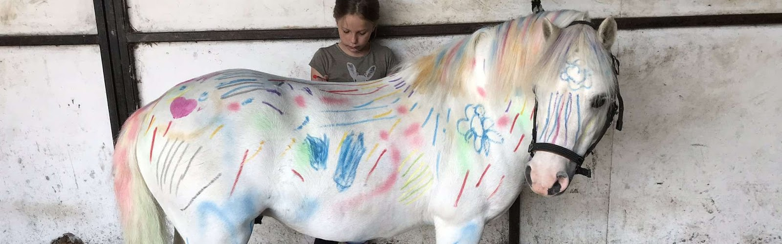 Girl Drawing on Pony