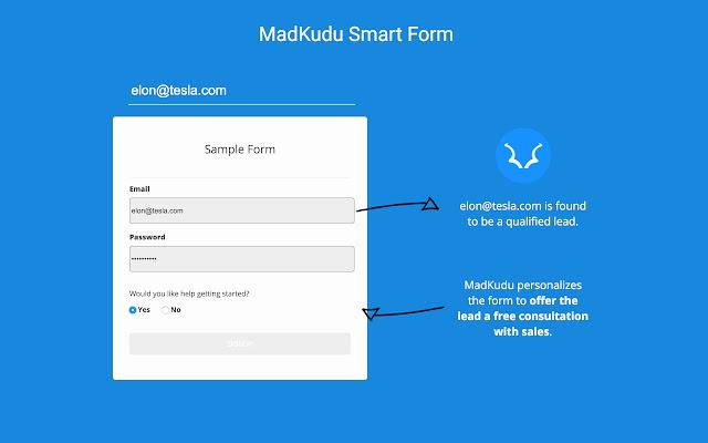 MadKudu Form