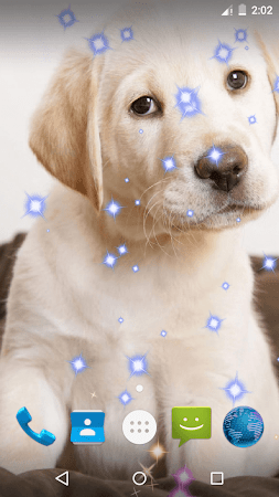 Puppy Live Wallpaper eta screenshot 2092575