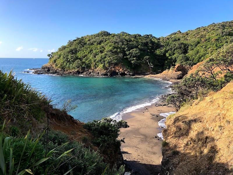 Tutukaka Coast 2020