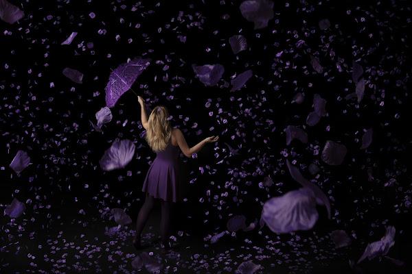 Purple rain di Madison