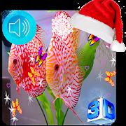 3D Discus Aquarium Live Wallpaper