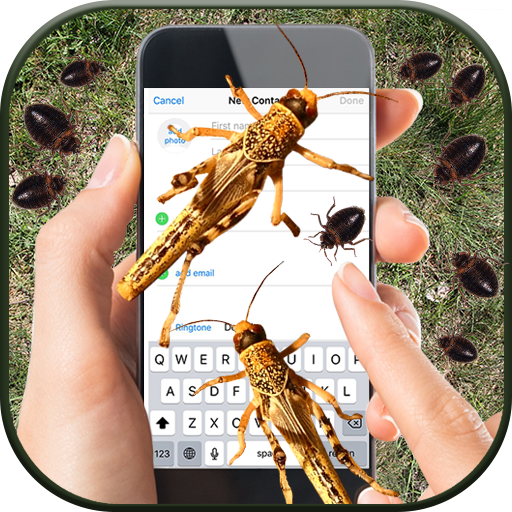 Bugs on Phone Screen – Funny Prank