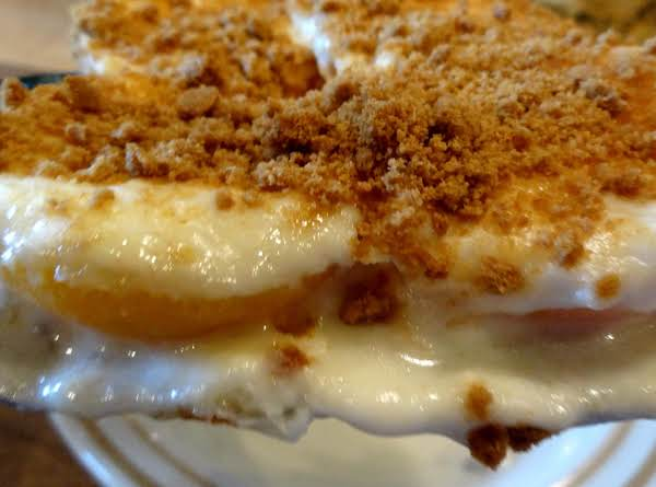 Bonnie's Apricot Almost Cheesecake