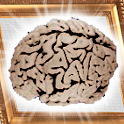 Elite Puzzle icon