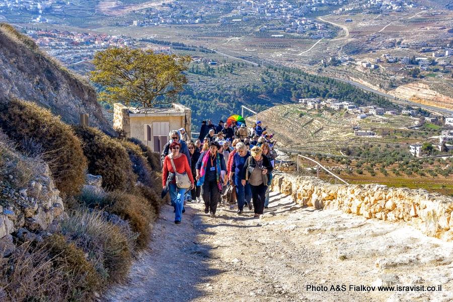 Экскурсия на гору Иродион. Гид в Израиле Светлана Фиалкова.