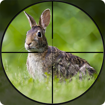 Rabbit Hunting Challenge 2019 - Shooting Games FPS