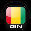 Radio Guinea - Guinée icon
