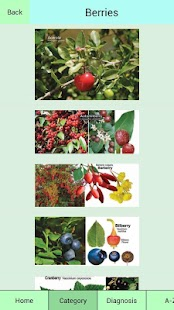 Edible Plant Guide- screenshot thumbnail