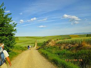 Photo: Retour dans les blés et les vignes