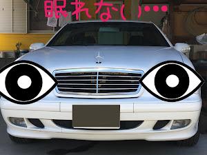 CLK W208 のカスタム事例画像 猫田慎之介さんの2020年05月28日13:20の投稿