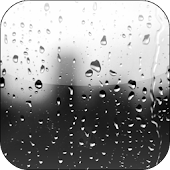 Rain Drops Video Wallpaper