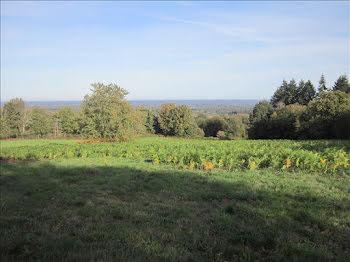 terrain à Montrol-Sénard (87)