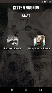 Kitten Sounds screenshot 3
