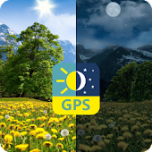 Mountain Summer Dandelions Flowers PRO Real 3D