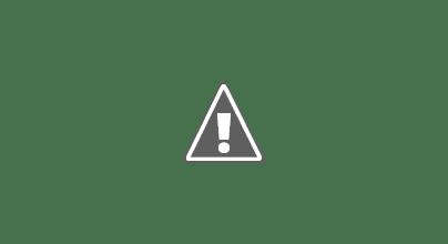 Photo: 19 Jan 14 Priorslee Lake Velvet Scoter and Scaup (Dave Tromans)