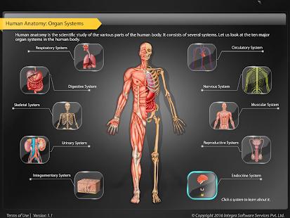 Physiology Games - Bioman Bio