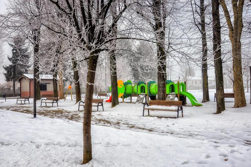 Il silenzio dell'inverno di Concetta Caracciolo
