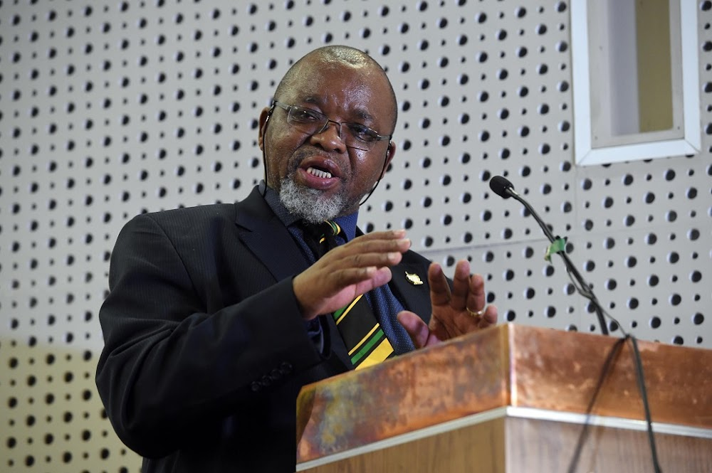 Gwede Mantashe moves on electricity crisis - Business Day