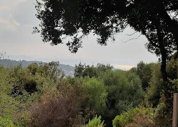 terrain à batir à Viggianello (2A)