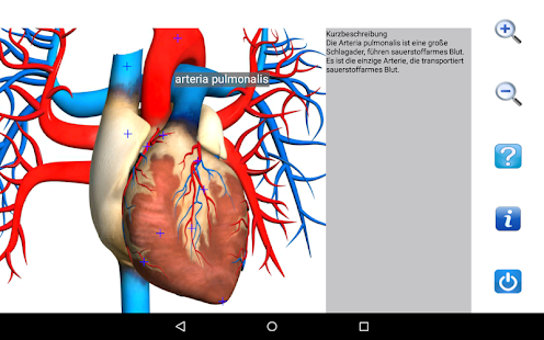 Visual Anatomy Free – Apps bei Google Play