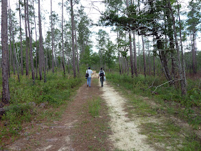 Photo: Brian and Siggi at the Red Pine Forest (Splinter Hill Bog Preserve in Alabama).