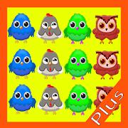 Bird Connect Puzzle Plus