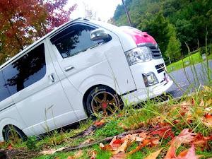 ハイエースバン TRH200Vのカスタム事例画像 シュナ 🐾🐶🐾CT2期生さんの2020年10月26日00:48の投稿