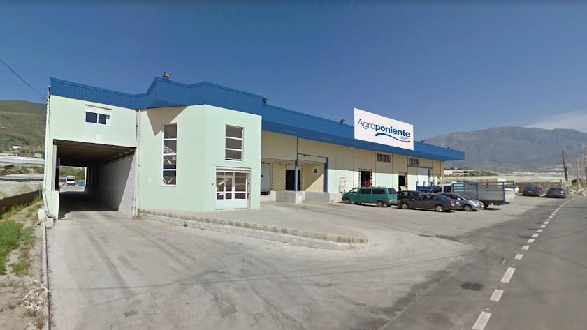 Nuevo centro del Grupo Agroponiente en Castell de Ferro