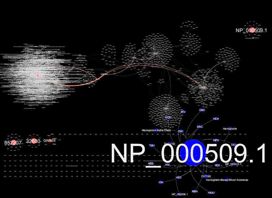 Photo: HBB Network visualized with Cytoscape. The inverse of the inverse not inferable from Figure (4) overlaps the hinge region for exon selection 3'5'duplications.  pubmed/21269460 [#35] http://www.ncbi.nlm.nih.gov/pmc/articles/PMC3039570/figure/F2/