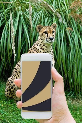 Chameleon Colorize Color Adapting Live Wallpaper Apk apps 3