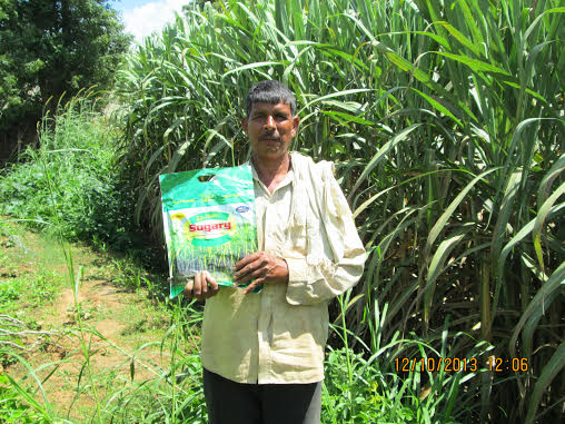 Cost-Effective Indian Farming Method