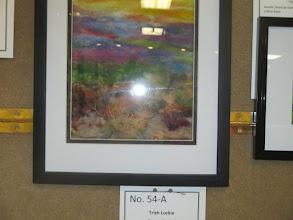 "Photo: Trish Lockie""Summer Meadow"""