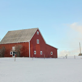 Red, White and Blue by Lena Arkell - Buildings & Architecture Other Exteriors ( red, blue sky, blue, white, canada, barn, snow, nova scotia, winter, clouds,  )