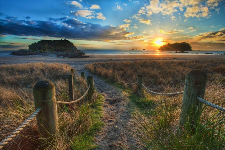 Follow me down... by Steve Rowland - Landscapes Sunsets & Sunrises ( sand, beach, sunrise, new zealand, mt manganui )