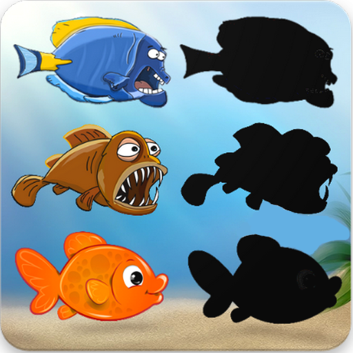 Fishes Puzzles