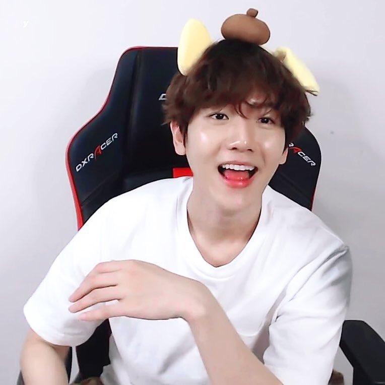 EXO Baekhyun Пудель