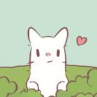 CATS & SOUP