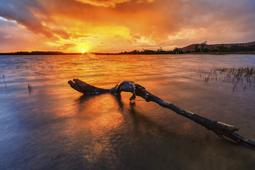 Golden Sunset by Andy Hutchinson - Landscapes Sunsets & Sunrises